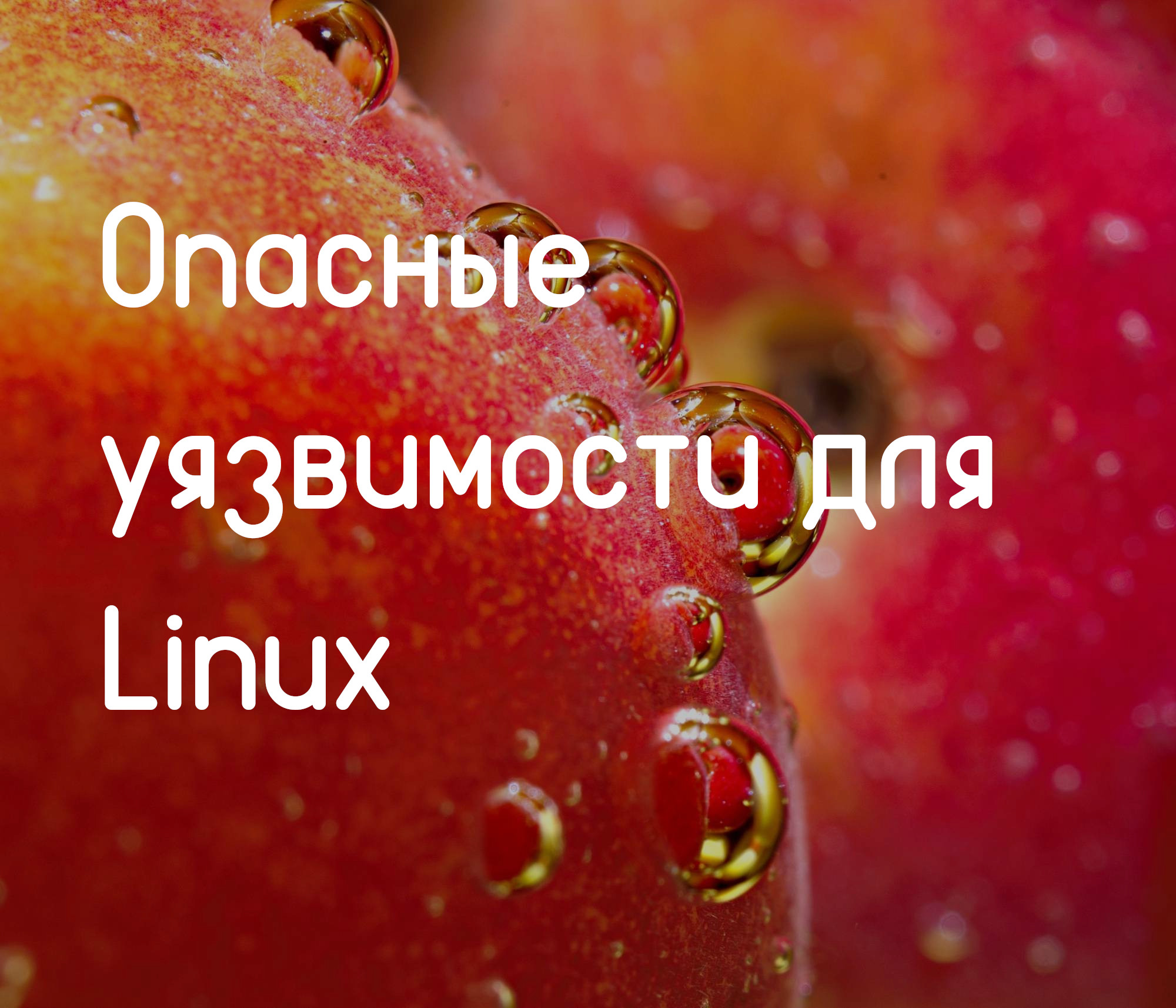 https://losst.ru/opasnye-uyazvimosti-linux#1_Dirty_COW